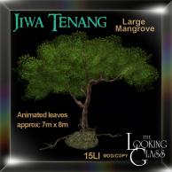 TLG - Jiwa Tenang Large Mangrove