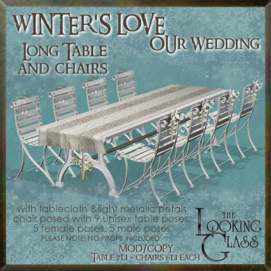 tlg - winter's love wedding long table & chairs