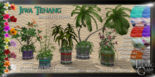 TLG - Jiwa Tenang Beach Pot Plants